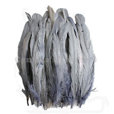 "50 pcs 8-10"" long Silver Grey Dyed Rooster COQUE tail Feathers for crafting, NEW"
