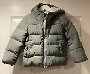 The North Face Kids Boys Gray Moondoggy Down Coat Size 4T