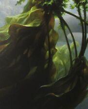 Robert Bateman Art Print Ocean Rhapsody Orca Seaweed Kelp Deep Whale Willy 1999