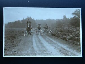Cumbria Hunting Theme BUCKHOUNDS IN A NEW FOREST GLADE c1930s RP Postcard