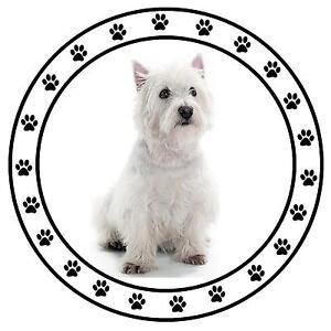 West Highland Terrier (Westie) Fun Auto Steuerscheibenhalter - Neu - Wieder -