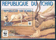 CHAD 2012 ADDAX ANTELOPES WWF  SOUVENIR SHEET  MINT NH