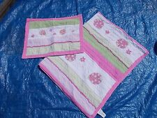 Girls pink green twin quilt pillowcase ladybugs bedding bed gingham flowers
