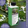 Feigen-Dünger Flüssigdünger für Ficus carica NPK, Echte Feige in Beet + Kübel