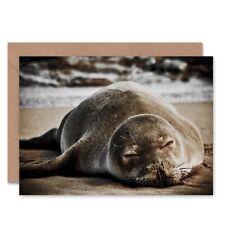 Birthday Animal Photo Hawaiian Monk Seal Asleep Blank Greeting Card
