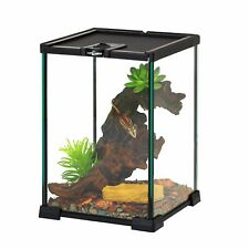 Indoor Mini Reptile Lizard Glass Terrarium Cage ,Full View Visually Appealing