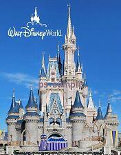 Walt Disney World Florida - DISNEY CINDERELLA CASTLE - day - Fridge Magnet