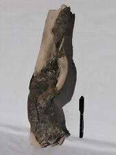 Treibholz Wurzel gedreht (431) Schwemmholz Shabby Kunst Deko Basteln Skulptur