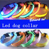 Lumière LED Collier Chien Compagnie Nylon Colliers Chat Clignotant Lumineux Nuit