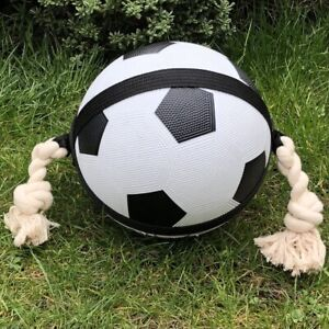 """Dog Toy Action Football 7.5"""" Rope Interactive Kick Throw Fetch Floats Retrieve"""