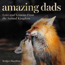 Amazing Dads by Bridget Hamilton Hardcover BOOK