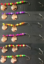 Copper Colorado # 3 1/2  Lake Erie Walleye Candy Worm Harness (1) set of (6)