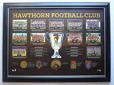 HAWTHORN FOOTBALL CLUB PREMIERSHIP HISTORY AFL HAWKS PREMIER YEARS PRINT FRAMED