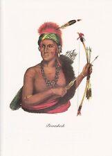 "1972 Vintage Full Color Art Plate ""CHIEF POWASHEEK"" NATIVE AMERICAN INDIAN Litho"