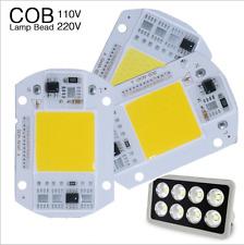 20W 30W 50W LEDs Floodlights COB Chip 110V 220V Input Integrated Smart IC Driver