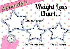MAGNETIC WEIGHT LOSS Chart/Diary/Pounds lost SLIMMING WORLD WEIGHT WATCHERS DIET