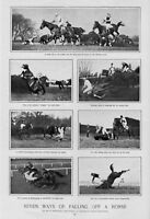 HORSES EQUINE WAYS OF FALLING OFF A HORSE TRIPLE FALL IN HURDLE RACE THE CROPPER