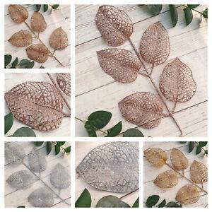 Ferns & Picks