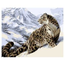 Snow Leopard Digital Oil Canvas Painting Art Wall Decoration by hand coloring