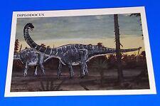 1993 Redstone Marketing Diplodocus Dinosaur Card #28 Jurassic Period