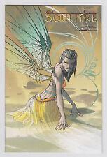 Michael Turner's Soulfire #1 Jay Company Comics.com Exclusive Variant Aspen Rare