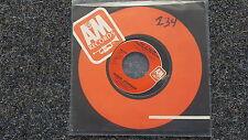Roger Hodgson/ Supertramp - Had a dream US 7'' Single