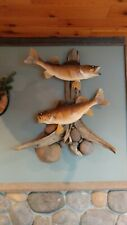 taxidermy walleye driftwood 2 fish 26 and 25 inch unique cool cape hide horns