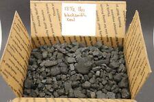 """(13.5 lbs) Blacksmithing Coal 1/2"""" - 2"""" Crushed Chunks for Blacksmith Forge Use"""