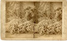 USA, Niagara Falls and vicinity Vintage stereocard print Tirage albuminé  11