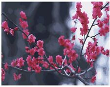 """Diy Paint by Number Kit with Framed Canvas 16"""" x 20"""" Cherry Blossom"""