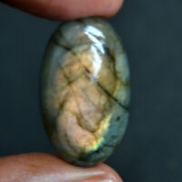 Cts. 35.20 Natural Spectecular Fire Labradorite Cab Oval Cabochon Loose Gemstone