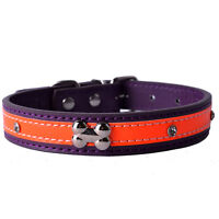 Bone Shaped Studded Dog Collar Leather Collars For Small Dogs Puppy Pet Supplies