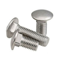 COACH BOLTS CUP SQUARE HEAD HEX BOLT /& NUTS-METRIC ZINC PLATED M6 x 50MM 200prs