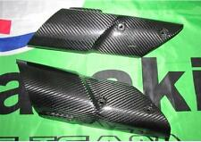 Kawasaki Z1000 2010-11 Carbone Fourche Revêtement Garde-Boue