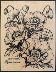 PSX K-1613 Poppies Papaveraceae Botanical Rubber Stamp