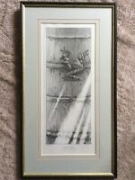Gary Hodges rare Tree Frog signed Limited Edition Print Framed 69 of 850