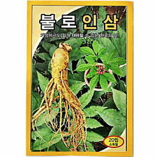 20 PCS Korea Wild Ginseng Vegetable Herb Seed Korea Panax Cultivation are