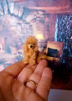 POODLE Dollhouse realistic OOAK miniature 1:12 handsculp.handmade