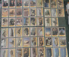 Operation Desert Shield Pacific Trading Cards Desert Storm Ama Group Cards 170