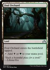 Innistrad Land Individual Magic: The Gathering Cards