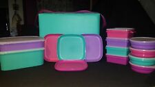 Tupperware NEW 25pc Beach Bright Picnic Set Insulated Cooler Snack bowl/Sandwich