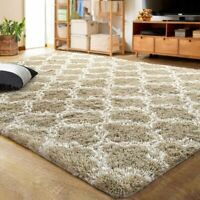 LOCHAS Luxury Velvet Shag Area Rug Mordern Indoor Plush Fluffy Rugs, Extra Soft