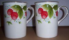 Royal Canterbury Fine Bone China Cups 2 Red Strawberry Plants