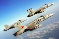 F/A-18 HORNETS FORMATION VFA-81 F-18 8x12 SILVER HALIDE PHOTO PRINT