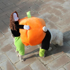 Funny Lovely Pet Dog Carrying Pumpkin Halloween Party Christmas Costume Cosplay