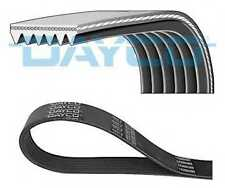 Dayco poly v-côtelé ceinture 6PK1736 6 côtes auxiliaire 1736mm ventilateur alternateur