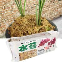 SOIL FOR MONKEY ORCHIDS ORCHID BARK SUBSTITUTE ORGANIC DRACULA ORCHIDS COMPOST