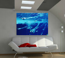 "Penguins Under Water Huge Art Giant Poster Wall Print 39""x57"" a541"