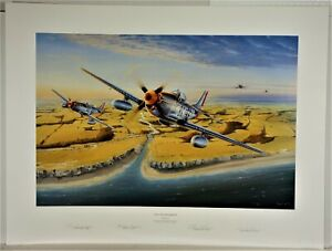 The Eyes of Eagles by Michael Short - s/n by artist - 4 Fighter Pilot signatures