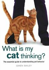 What Is My Cat Thinking New Book Essential Guide to Understanding Your Cat